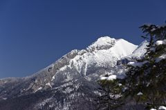 Snowy hilltops of tatra mountains in poland in win Royalty Free Stock Photo