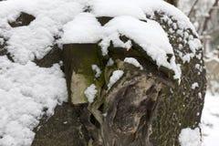 Snowy historic Jesus on winter old Prague Cemetery, Czech Republic Royalty Free Stock Photography
