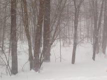 Snowy-Holz Stockfotografie