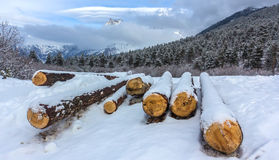 Snowy-Holz Stockfotos