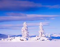 Snowy Honey Moon Island Tagish Lake Yukon T Canada Royalty Free Stock Photos