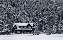 Snowy House Grayscale Photo Royalty Free Stock Photos