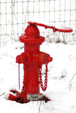 Snowy Hydrant Stock Photography