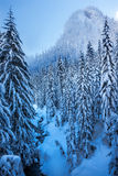 Snowy Ice Blue Stream Snow Mountain Snoqualme Pass Washington Royalty Free Stock Image