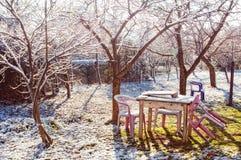 Snowy-im Freiengarten Stockbild