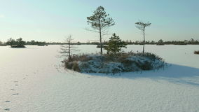 Snowy island of trees in park. Clean and frosty daytime. Smooth dolly shot. Snowy island of the trees in the national park. Clean and frosty daytime. Smooth stock video footage