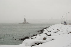 Snowy in the istanbul city Stock Image
