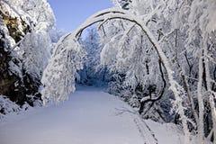 Snowy-Jahreszeit Stockbild