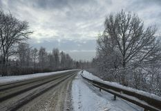 Snowy January morning in Nevsky forest Park. The Bank of the riv. Er Neva royalty free stock image