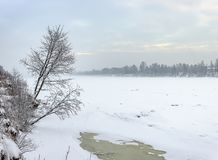 Snowy January morning in Nevsky forest Park. The Bank of the riv. Er Neva stock photo
