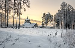 Snowy January morning in Nevsky forest Park. The Bank of the river Neva stock image