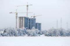 Snowy January morning in Nevsky forest Park. The Bank of the river Neva royalty free stock image