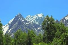Snowy-Kaukasus und grüner Wald darunter Stockfoto