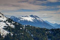Snowy-Kiefernwald und -spitzen in Karavanke-Strecke Österreich Slowenien stockfotografie