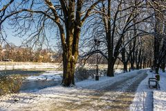 Snowy Kiev embankment in Uzhgorod. Beautiful and sunny winter day. walk on fresh air along the chestnut tree alley Royalty Free Stock Images