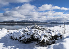 Snowy lake landscape with cloudy blue sky. A cloudy blue sky after a snow storm over Lake Almanor near Lassen Volcanic National Park in Northern California Royalty Free Stock Photos