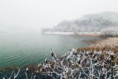 Snowy lake landscape. In winter Stock Photos
