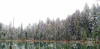 Snowy lake. Water green Christmas winter outdoor mountain white green tree Stock Photos