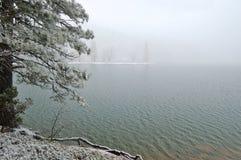 Snowy lakeshore Royalty Free Stock Image