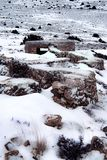 Snowy-Landlandschaft, Stockfotografie