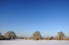 A Snowy Landscape. A Wide shot of a snowy landscape Stock Images