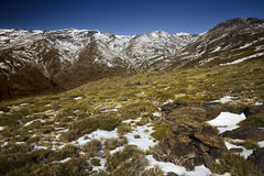 Snowy Landscape. In Sierra Nevada, Spain royalty free stock image