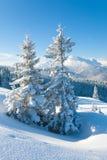 Snowy landscape Stock Images