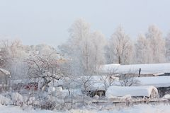 Snowy Landscape Royalty Free Stock Photo