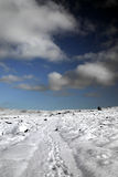 Snowy landscape. A snow covered landscape under a blue sky Royalty Free Stock Images