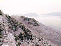 Snowy landscape. Stock Image