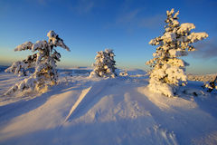 Snowy landscape Stock Photography