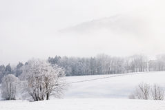 Free Snowy Landscape Stock Photography - 7862732