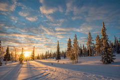 Free Snowy Landscape At Sunset, Frozen Trees In Winter In Saariselka, Lapland Finland Royalty Free Stock Photography - 89390157