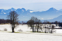 Snowy landscape in the Bavarian mountains Royalty Free Stock Photos