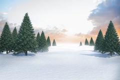 Snowy landscape with fir trees. Digitally generated Snowy landscape with fir trees Royalty Free Stock Photo