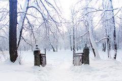 Snowy Landscape. Gate to winter Wonderland Royalty Free Stock Photos