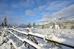 Snowy Landscape in Glacier National Park Royalty Free Stock Images