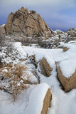 Snowy Landscape in Joshua Tree National Park Stock Photo