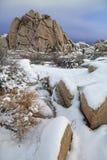 Snowy Landscape in Joshua Tree National Park Stock Photo