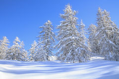 Snowy landscape in the mountains Stock Images