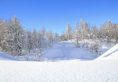 Snowy landscape in the mountains Royalty Free Stock Photography