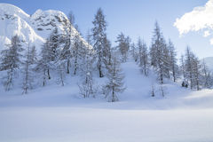Snowy landscape in the mountains Royalty Free Stock Images