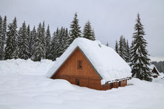 Snowy landscape in the mountains. Of Slovenia Royalty Free Stock Photos
