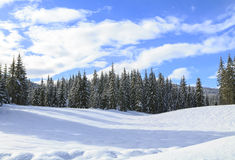 Snowy landscape in the mountains. Of Slovenia Stock Images