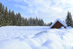 Snowy landscape in the mountains. Of Slovenia Royalty Free Stock Images