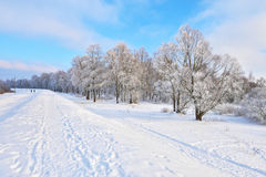 Snowy landscape by the Narew river valley. Royalty Free Stock Photos