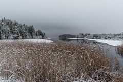 A snowy landscape overlooking water and ice. With a grey sky Royalty Free Stock Images