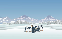 Snowy landscape with penguins Royalty Free Stock Photos