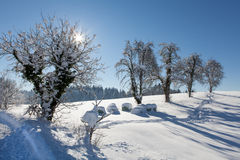 Snowy landscape scenery with flat county Royalty Free Stock Photos