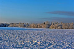 Snowy landscape Royalty Free Stock Photos